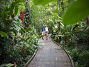 Rainforest walking trail in Costa Rica's Premier Development in the Central Pacific with Luxury Houses for sale