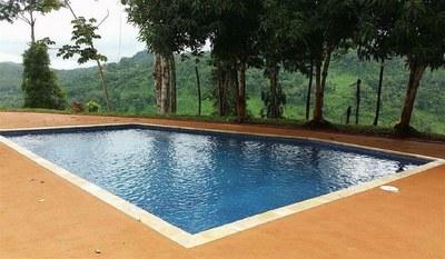 03e Pool w mangos.JPG