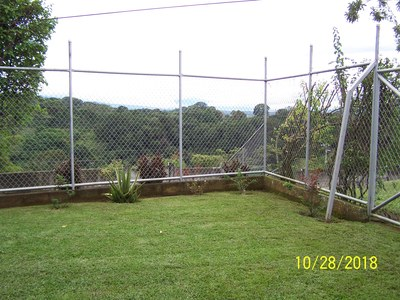 Corner of back yard.JPG