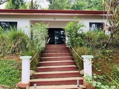 Hotel Casa del Tucán -115.jpg