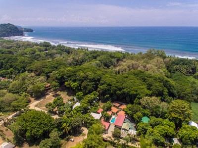 Tropical Beach (8).jpg