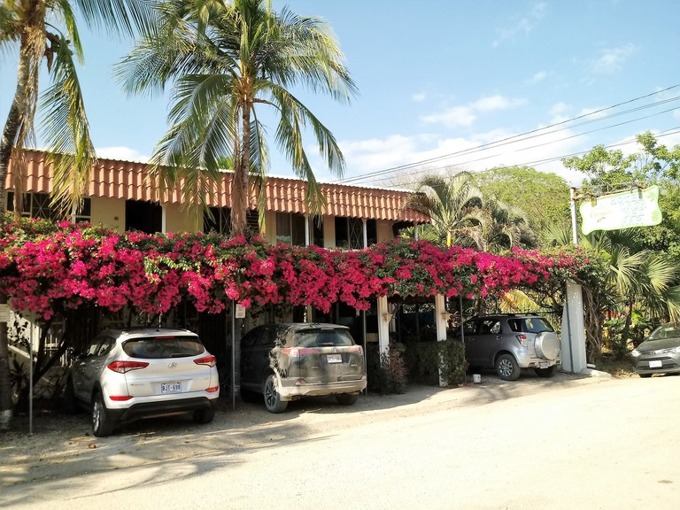 1013 - Hotel by the Sea: Wonderful small hotel across the road from the beach