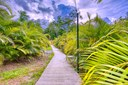 Nature paths