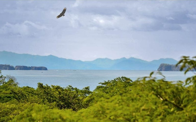 Condor Lodge: Resort Hotel For Sale: Near the Coast in Playa Conchal, Costa Rica