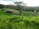 Real Estate, Costa Rica, Lake Arenal, Tilaran, land for sale