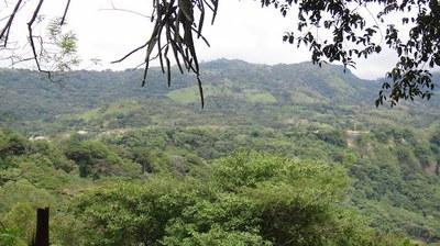 Quintas ecologicas en Hacienda Villa Verde , Turrubares Alajuela