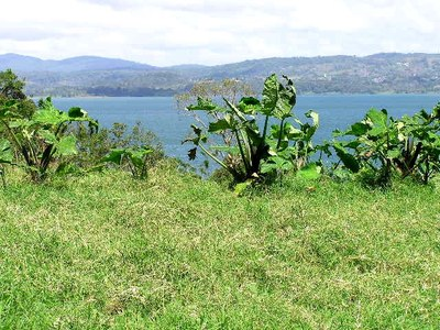 5 Acres with Lake Arenal view and close lake access