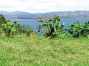 Lake View property suitable for residential or commercial construction, subdivision, hobby farm etc. The parcel has a creek on one side, some large trees and pasture land. All services available, 25 Minutes from Tilaran.