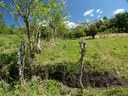 Country view lots, construction, Lake Arenal, Costa Rica