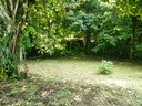 Lake Arenal View lot, large citrus trees, creek,
