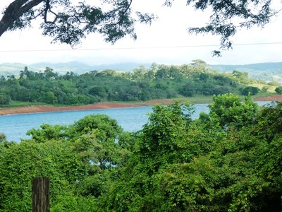 Lake Arenal View lot, large citrus trees, creek,