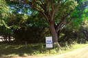 Surfside-Portrero 4 Lot Parcel Fire Sale in Guanacaste, Costa Rica