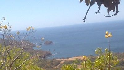 Nos Nubles Ocean View Development Pedregosa