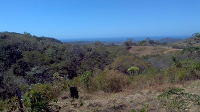 Land for Sale Close to Ocean 212 Hectares