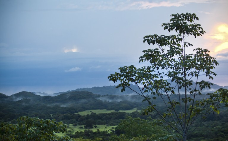 Finca Monte Paraiso: Valley views and close to schools