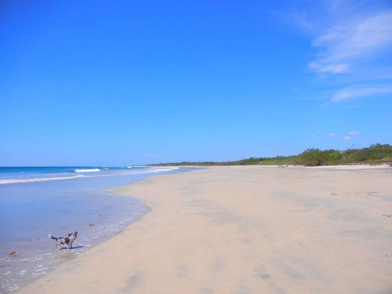 Near the Coast Home Construction Site For Sale in Playa Avellanas