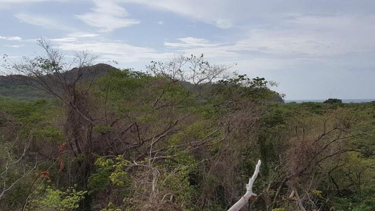 Ocean view property in Playa Conchal