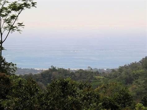 Mountain Home Construction Site For Sale in Uvita