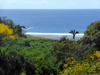 Ocean view Property - Lote 9C (2).JPG