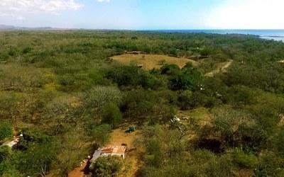 Avellanas Land
