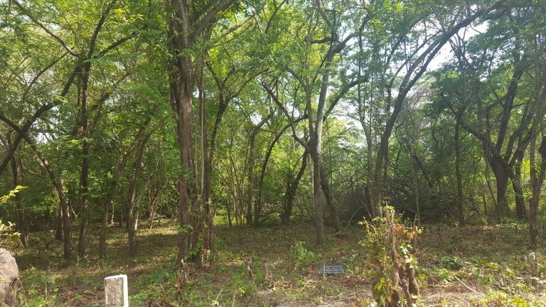Lot A3: Great Opportunity To Build Your Dream Home Steps From The Beach