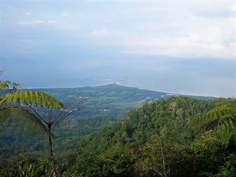 Finca La Guágara, Uvita: Mountain Home Construction Site For Sale in Uvita