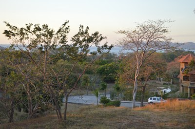Fruit Trees In Lot - Oceanview Lot in Gated Community Close To Beach