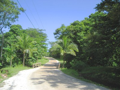 Large Lot, Close To The Beach In Safe Gated Community