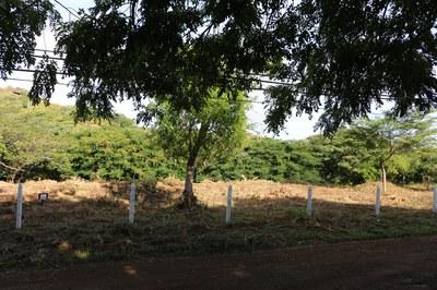 Penon Lot Main View