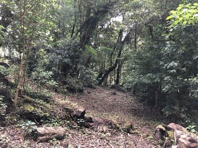 Terreno en San José de la Montaña - 11.jpg