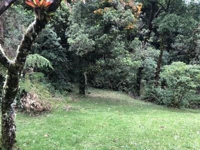 Terreno en San José de la Montaña - 19.jpg