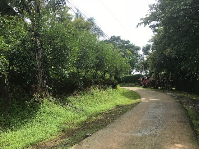 Uvita lot with Water and Electricity, ready to build: Mountain Home Construction Site For Sale in Uvita