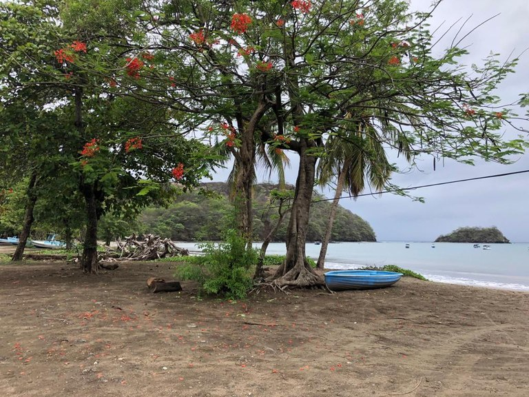 Great opportunity - Oceanfront lot in Playas del Coco