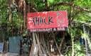 Area Amenities-The Shack
