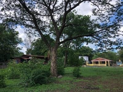 Lot in Guardia, Liberia - LL1900150 (2).jpg