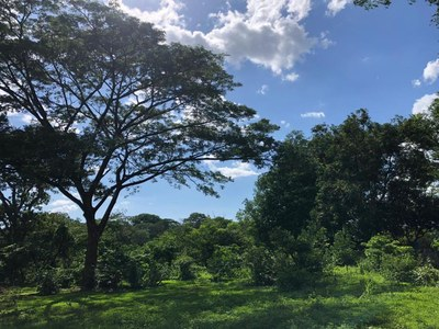 Lot in Guardia, Liberia - LL1900150 (4).jpg