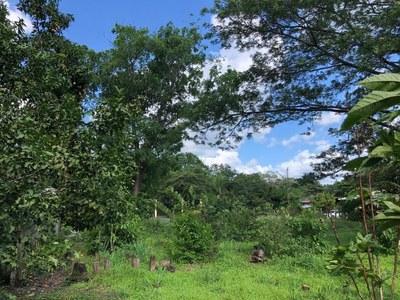 Lot in Guardia, Liberia - LL1900150 (6).jpg
