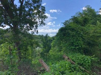 Lot in Guardia, Liberia - LL1900150 (7).jpg