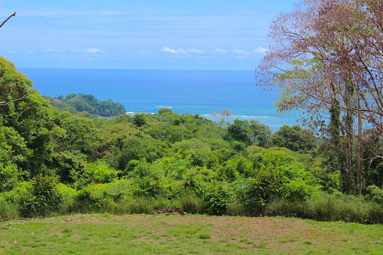 Incredible Ocean View Property with Prime Location in Dominical