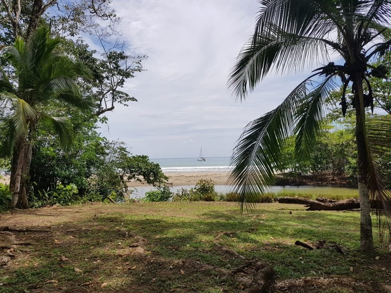 Oceanfront and Riverfront lot in Dominicalito