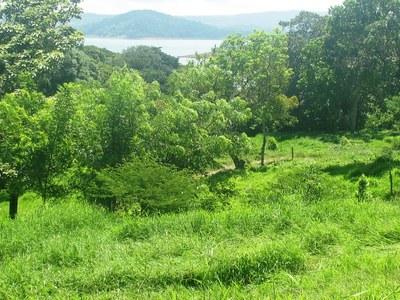Lake Arenal, Costa Rica, lots B&H04.JPG