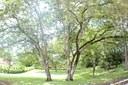 Loma Verde Lot #28