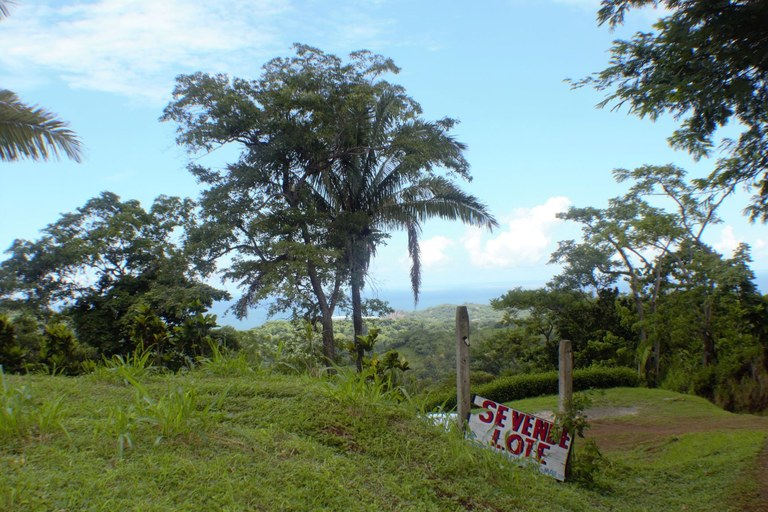 5048a Santo Domingo Ocean View Lot #1:Stunning Ocean View with Tranquil Jungle Surroundings