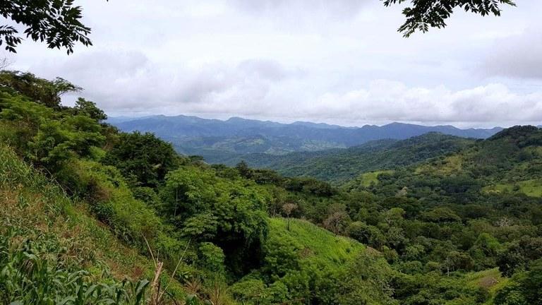 Finca Cerro Negro: PRICE REDUCED - 649 Hectare Farm w/Great Views, Water & Accessibility