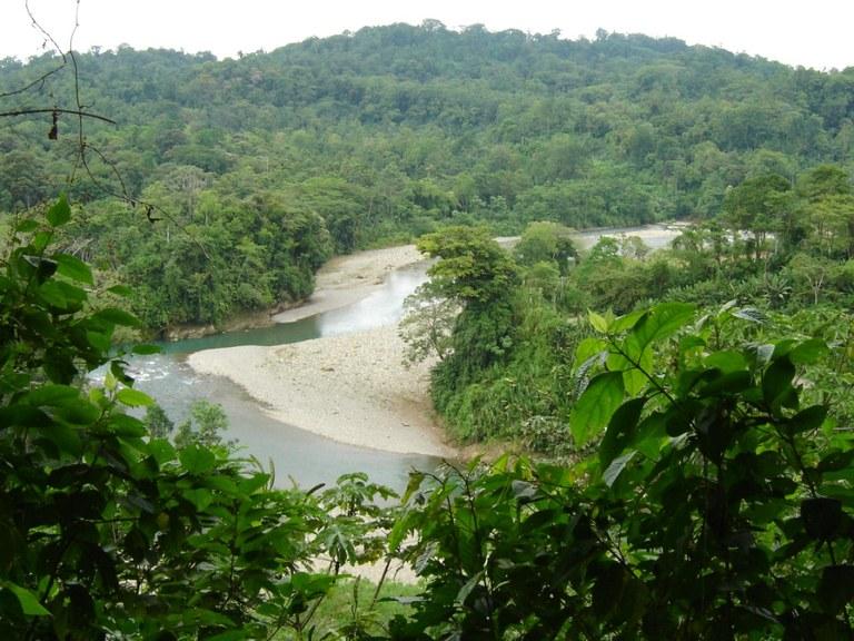 Vista del Mar: Ocean view, riverfront, tropical forest