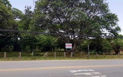 Huacas Land For Sale