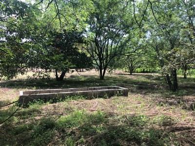 Commercial Property Liberia - LL1900270 (5).jpg