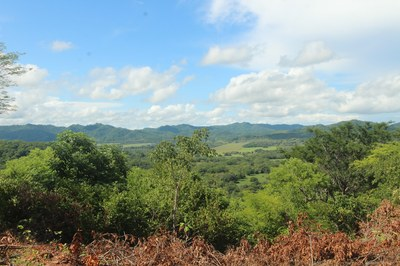 Ocean View Teak farm In Tamarindo