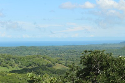 Ocean View development and Teak Farm close to tamarindo