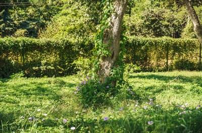 Hilltop_Estates_11_07_small.jpg